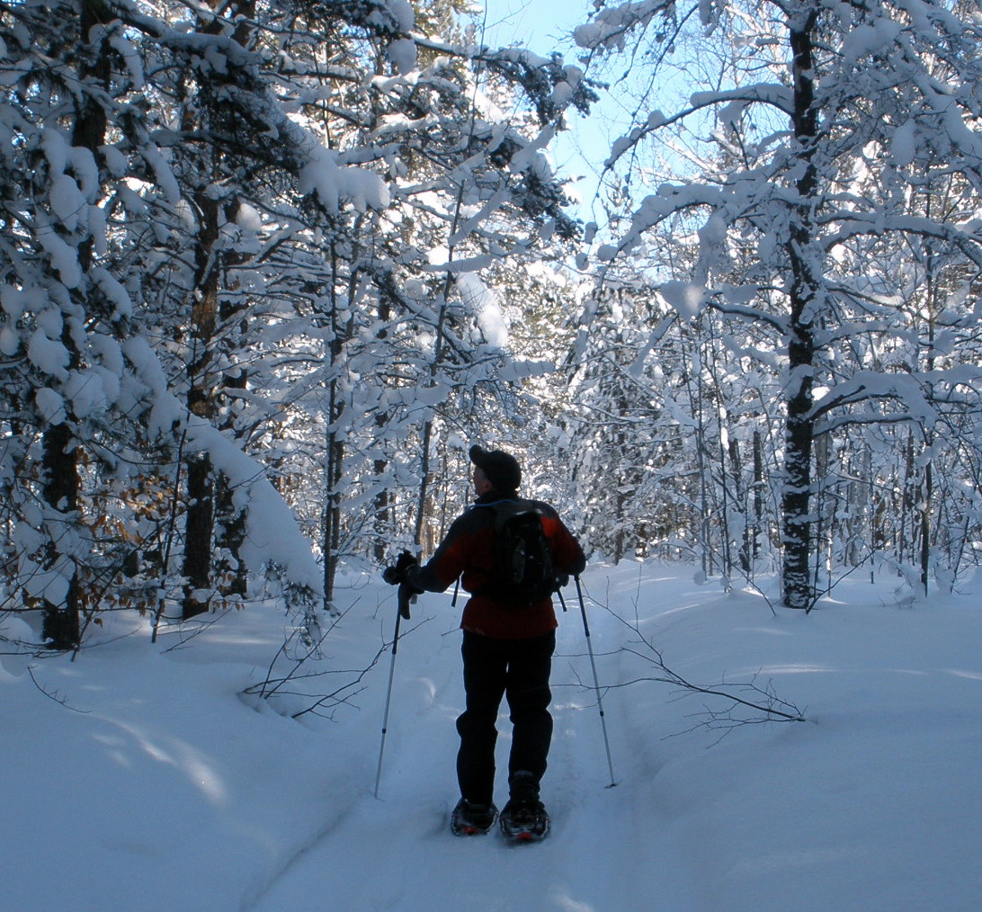 Snowshoing in Hiawatha National Forest